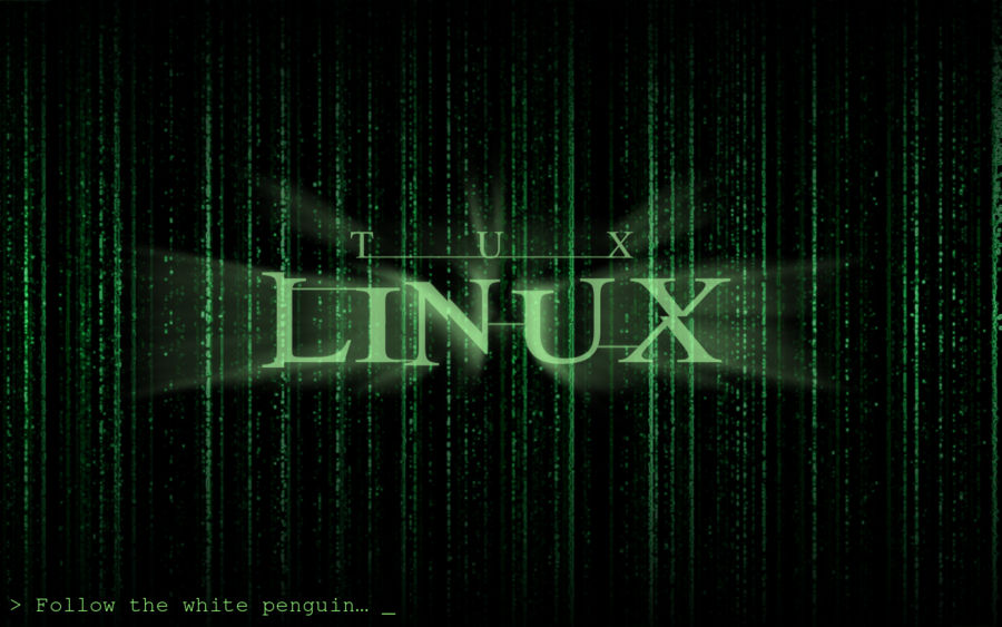 Porque Linux es menos propenso a virus que WIndows?