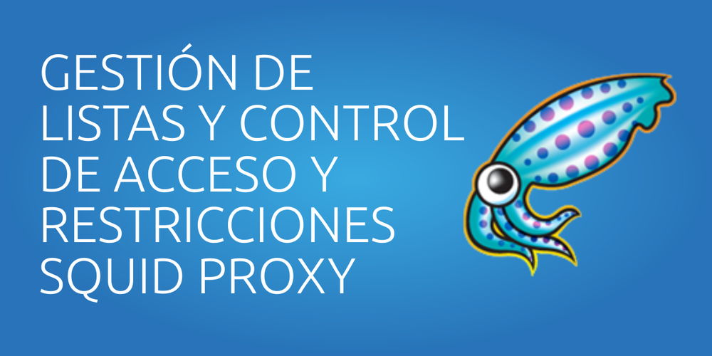 Manual de Usuario – Squid Proxy Server
